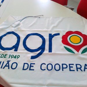 bdr-bandeiras-e-mastros-bandeira-publicitaria-agros