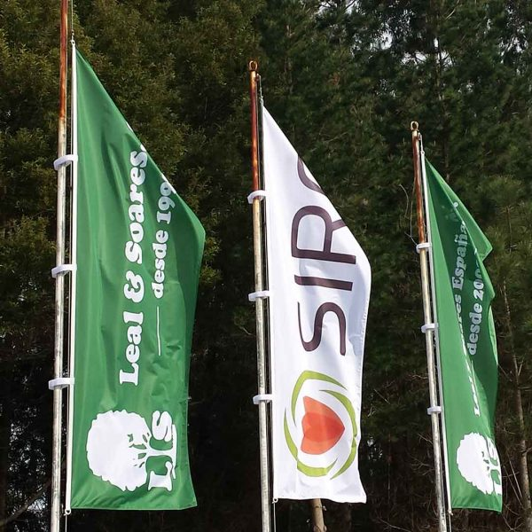 bdr-bandeiras-e-mastros-pendao-siro